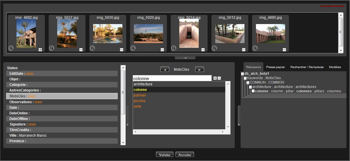Éditer les notices documentaires — Phraseanet 3.7 documentation